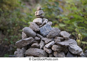Pile of Rocks in a Green Forest
