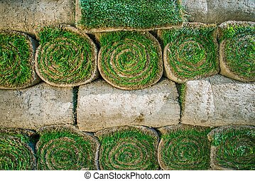 Rolled Natural Grass Turfs