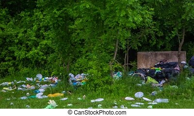 Pile Of Rubbish Scattered On Green Grass In Forest