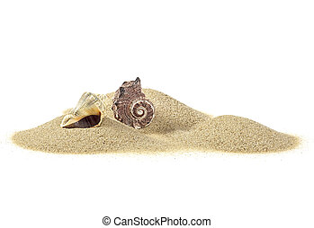 Pile of sand and seashells on white background