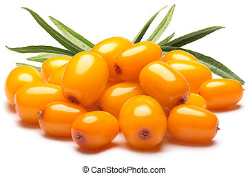Pile of sea buckthorn berries with leaves, clipping paths