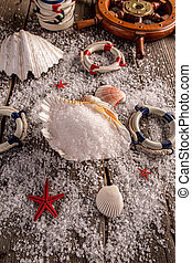 Pile of sea salt in shell
