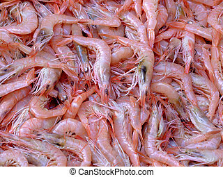 Pile of shrimps