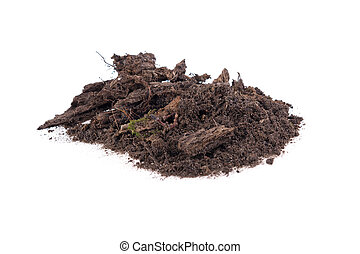 pile of soil with a green sprout on a white background
