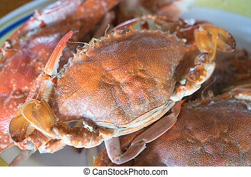 Pile of steamed crab