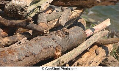 Pile of timber. Log and sunlight.