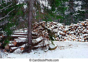Pile of timber - Piles of timber by Swedish dirt road ...