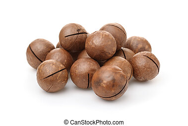 Pile of unshelled macadamia nuts isolated on white