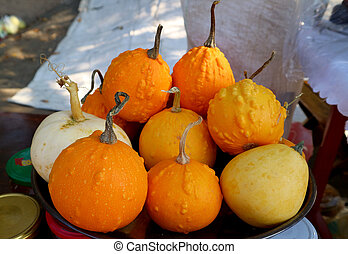 Pile of vivid yellow and orange color pumpkins selling at the market