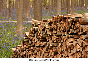 Pile of Wood - 2