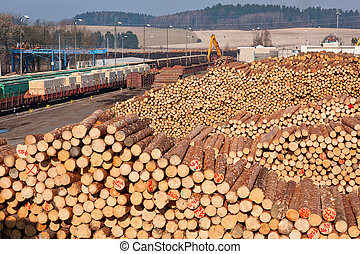 Pile of wood - A view of huge stacks of logs piled high at a...