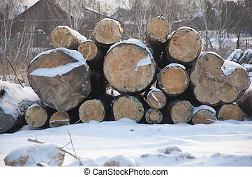 Pile of wood logs in winter. Wood industry.