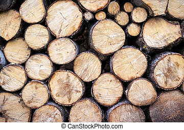 Pile of wood logs storage for industry. Section plane of natural wood log background. The saw cuts logs.