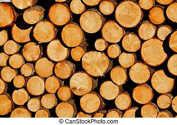 pile of wood, photo as a background , wood log background texture
