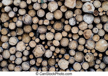 Pile of wooden trunks