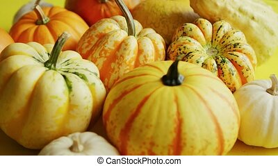 Pile of yellow pumpkins - From above view of heap of ripe...