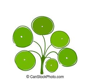 Pilea also known as money plan - Pilea peperomioides also...