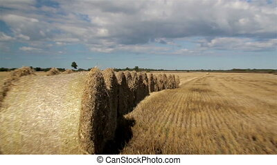 Piled up haystack in the field. All piled up so its easy to...