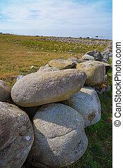 rocks in a meadow