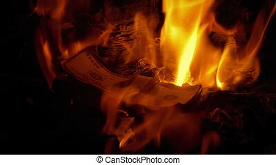 Piles Of Money Burning In The Fire