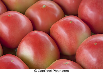 piles of tomatoes