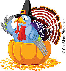 Illustration of a Thanksgiving turkey with pilgrim hat sitting in the pumpkin