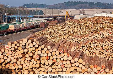 pilha, de, madeira