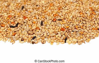 pilha, de, semente, mistura, isolado