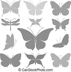 pillangók, grafikus, körvonal