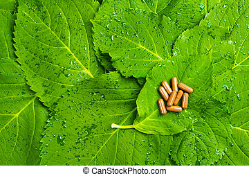 Pills over green leaves. Homeopatic medicine. Healthy vitamins