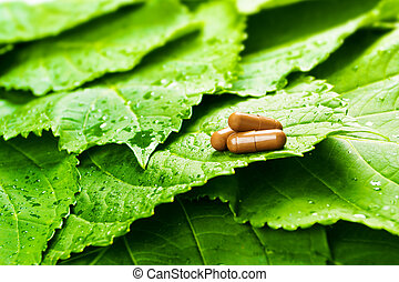 Pills over green leaves with water drops