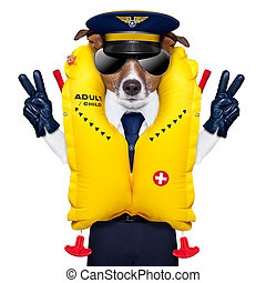 pilot captain dog wearing emergency life vest with peace fingers