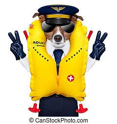 pilot dog - pilot captain dog wearing emergency life vest ...