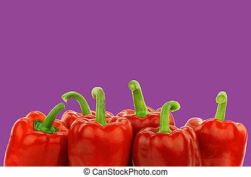 pimentas, fresco, (capsicum), vermelho, sino