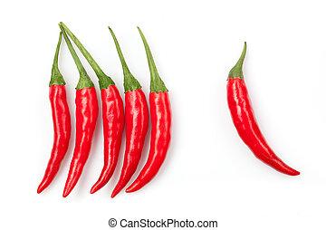 pimienta chili, aislado, blanco