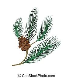 pin, branche, cone., mince, jeune, vecteur, illustration.