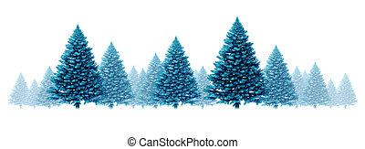 pin, fond, bleu, hiver