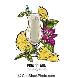 Pina colada cocktail, mint leaves and orchid flower; vector...