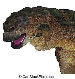 pinacosaurus, dinossauro, cabeça