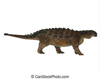 pinacosaurus, dinossauro, perfil lateral