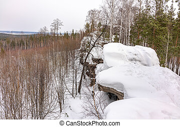 Pine and birch on a snow-covered rock