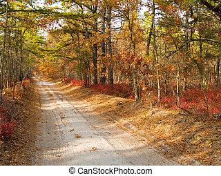 Pine Barrens Road