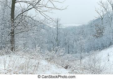 Pine Bend Bluffs Snowy Hills