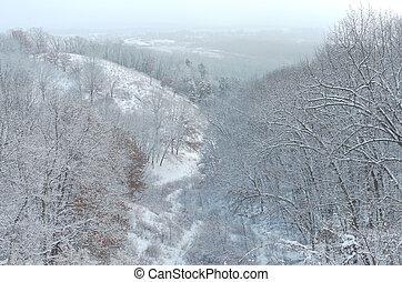 Pine Bend Bluffs Winter Horizon - forested hills overlooking...
