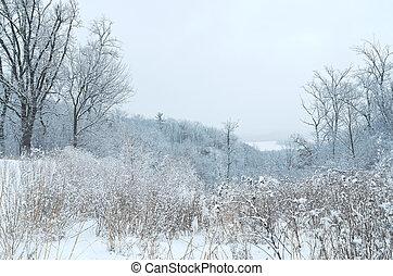 Pine Bend Bluffs Winter Vista