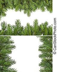 Pine branch borders