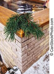 pine branches near a hot conifer spa