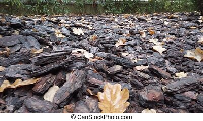 Panorama of brown pine bark mulch on a flower bed in the park