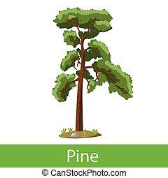 Pine cartoon tree. Single illustration on a white background