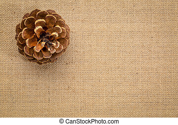 Pine cone against burlap canvas